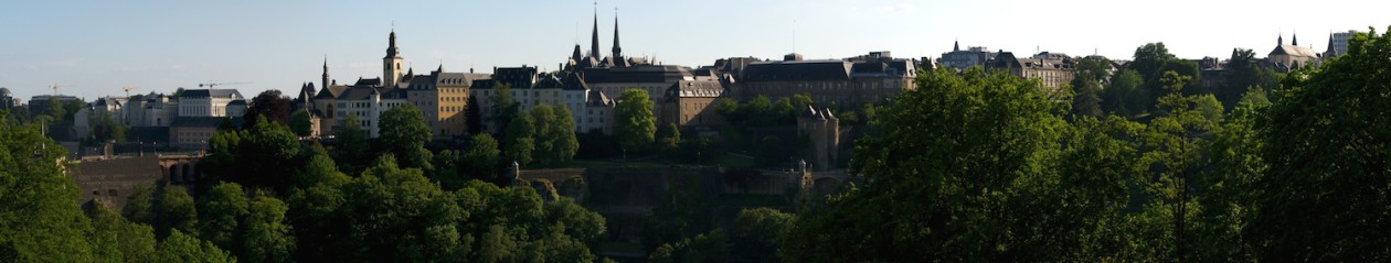 Médiation professionnelle au Luxembourg